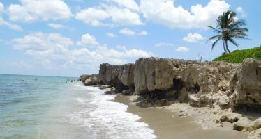 Stuart : un site magnifique du Martin County (au nord de Palm Beach en Floride)