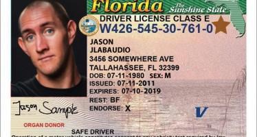 Le permis de conduire aux Etats-Unis