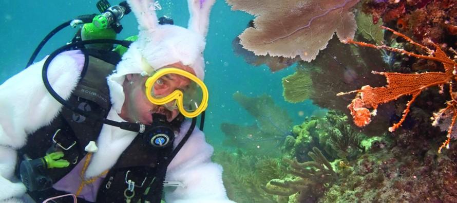 Les fêtes de Pâques 2015 à Miami et en Floride
