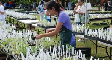 Pour un automne bio ? La Redland Growfest de Miami !
