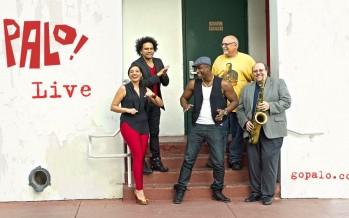 Palo! : la musique afro-cubaine de Miami !
