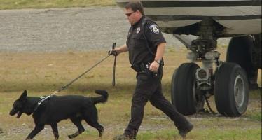 Etats-Unis : La sécurité dans les aéroports en question