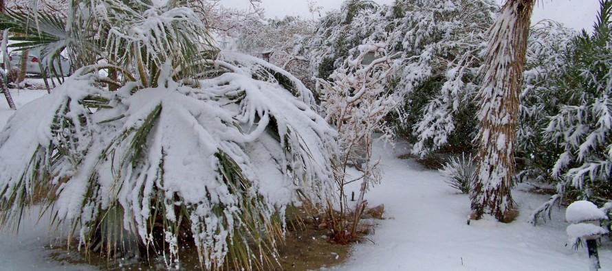 La Floride va aussi avoir froid ce weekend ! (alerte météo)