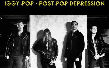 Iggy Pop : le rocker de Miami sort un nouvel album !