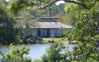Morikami : le fantastique jardin japonais de Delray Beach