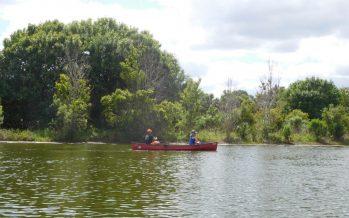 Riverbend park : les Everglades sur Jupiter