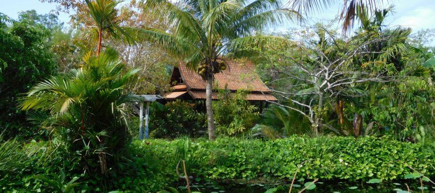 Jardins Botaniques de Naples : l'un des endroits les plus charmants de Floride