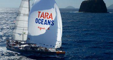 Tara a quitté Lorient et arrive à Miami le 28 juin !