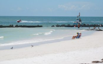 Honeymoon Island : la nature à l'état brut en Floride