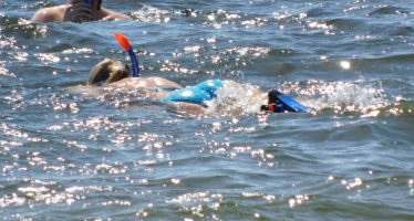 Plongée sous-marine et snorkeling au John Pennekamp Park de Key Largo (Floride)