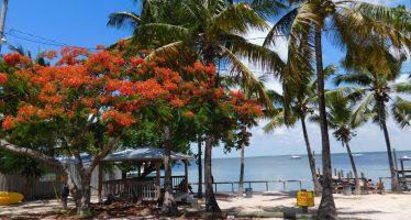 Key Largo : plongée et farniente sur la perle des Keys de Floride