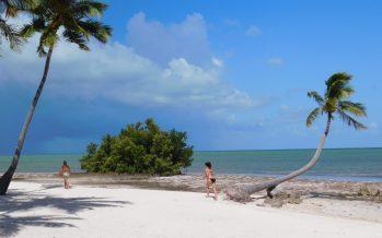 Islamorada : le joyaux des îles Keys de Floride et son standing extraordinaire