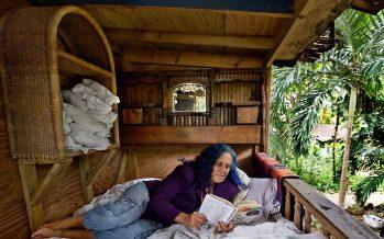 Une hippie aux cheveux mauves défend sa cabane à Miami