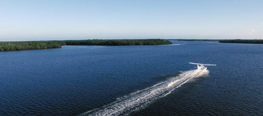 Visiter les 10 000 Islands des Everglades