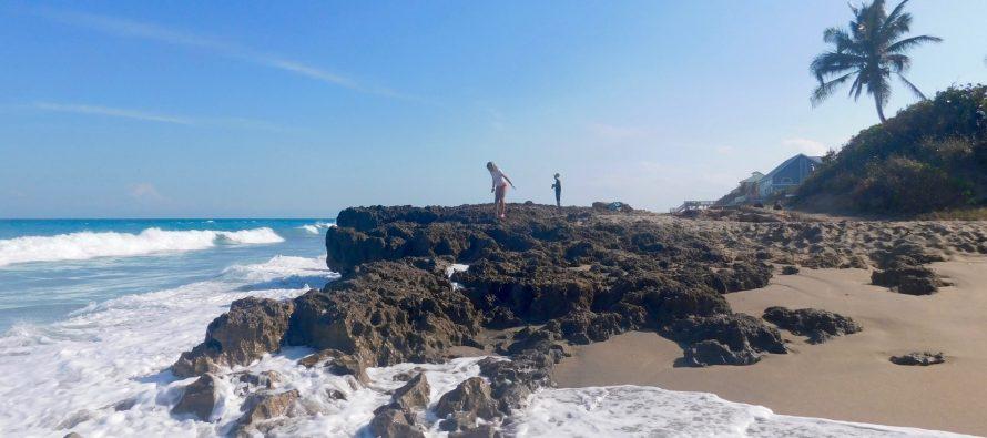 Martin County : une belle halte nature au nord de Palm Beach en Floride