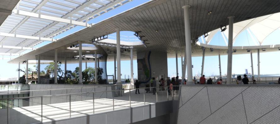 Visiter le Frost Museum of Science de Miami !