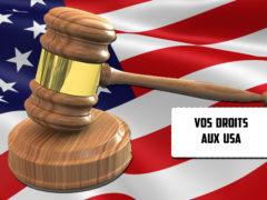 Bricoler votre Droit sur internet : En Floride on peut perdre en gagnant!