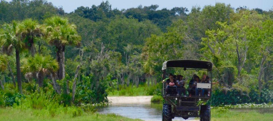 Billie Swamp Safari : réserve indienne, airboats et attractions dans les Everglades