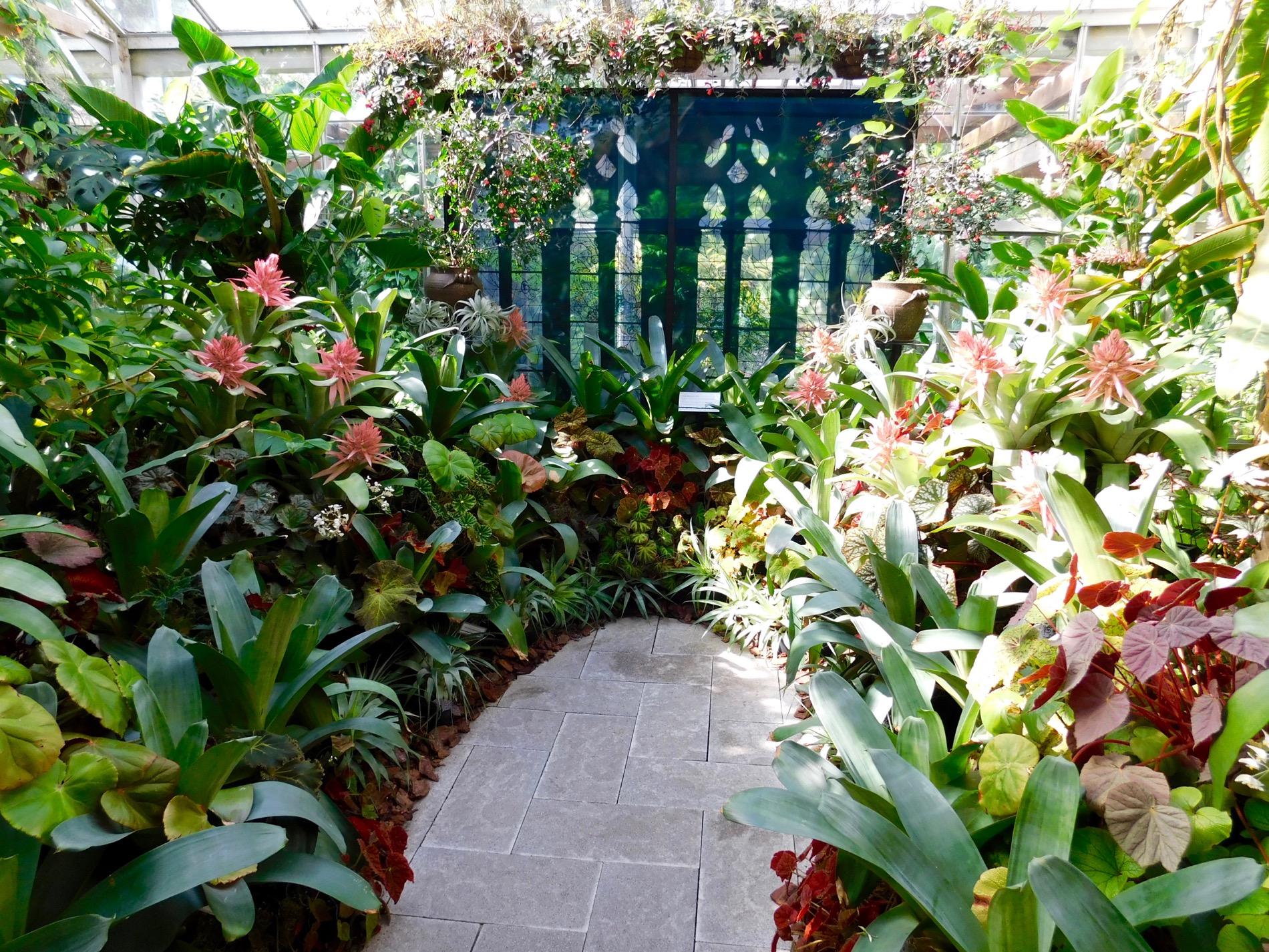 Mary Selby Botanical Gardens Sarasota 7769 Le Courrier