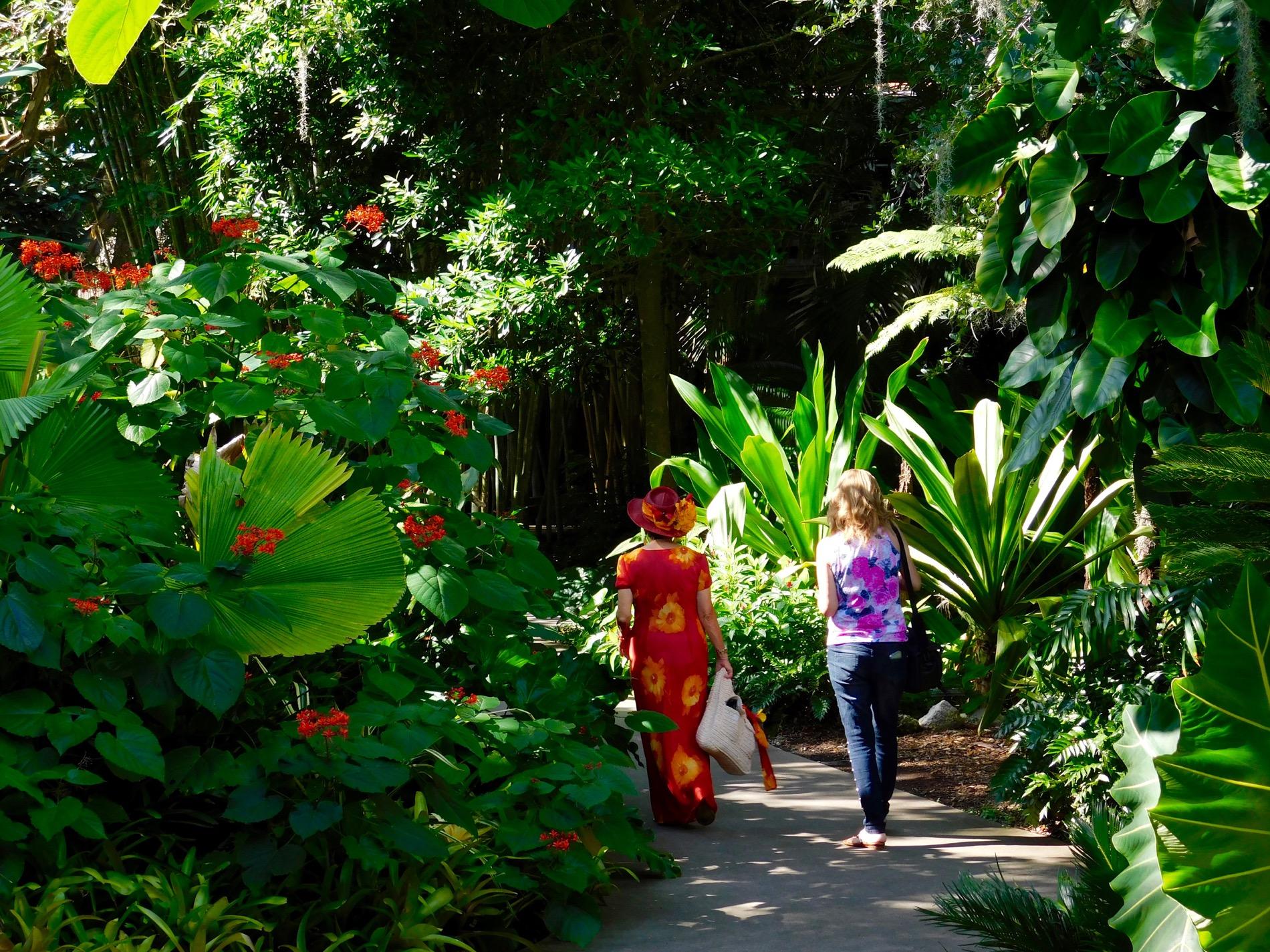 Mary Selby Botanical Gardens Sarasota 7781 Le Courrier