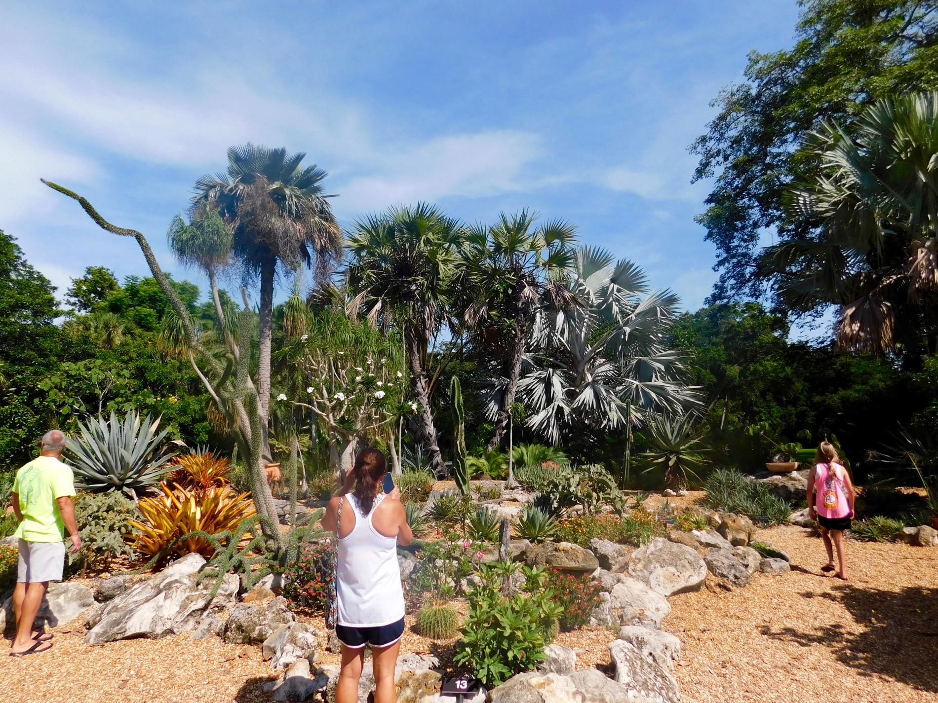 Mary Selby Botanical Gardens Sarasota 7831 Le Courrier
