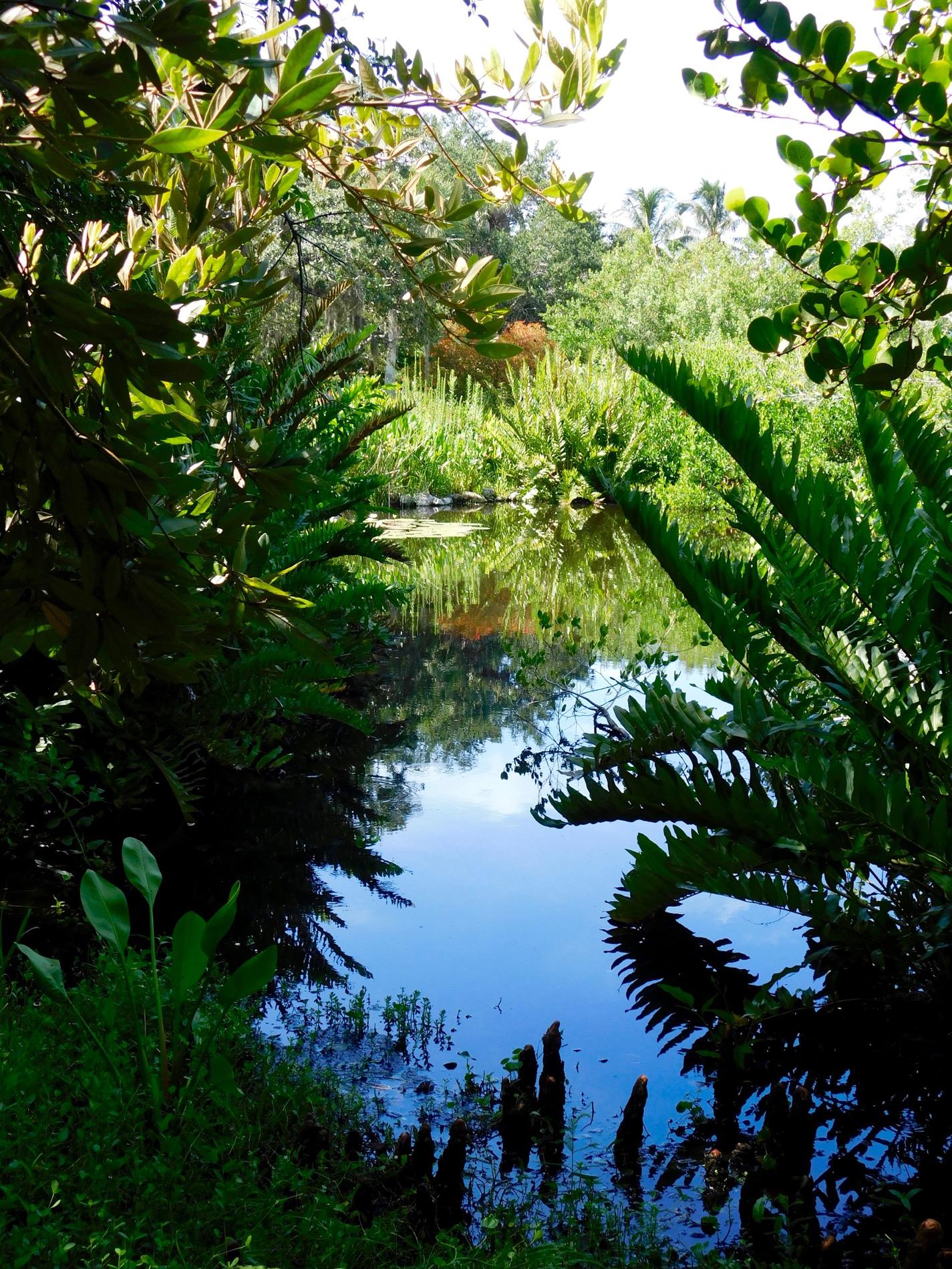 Mary Selby Botanical Gardens Sarasota 7891 Le Courrier