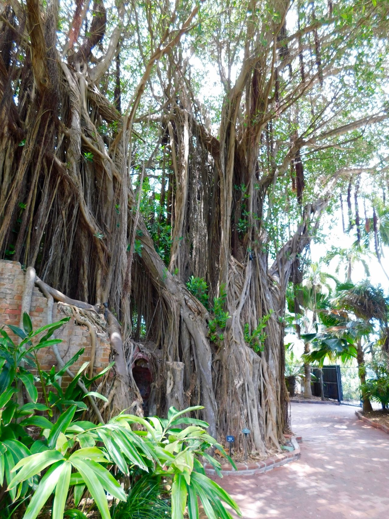 West Martello Tower Fort Jardin Key West 4729 Le