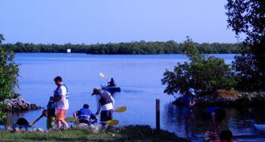 Rookery Bay : un immense ensemble d'îles et de mangroves entre Naples et Marco Island