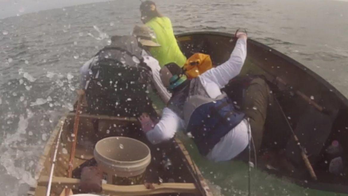 Photo of Un requin-bouledogue en colère attaque des canoës à Key West (vidéo)