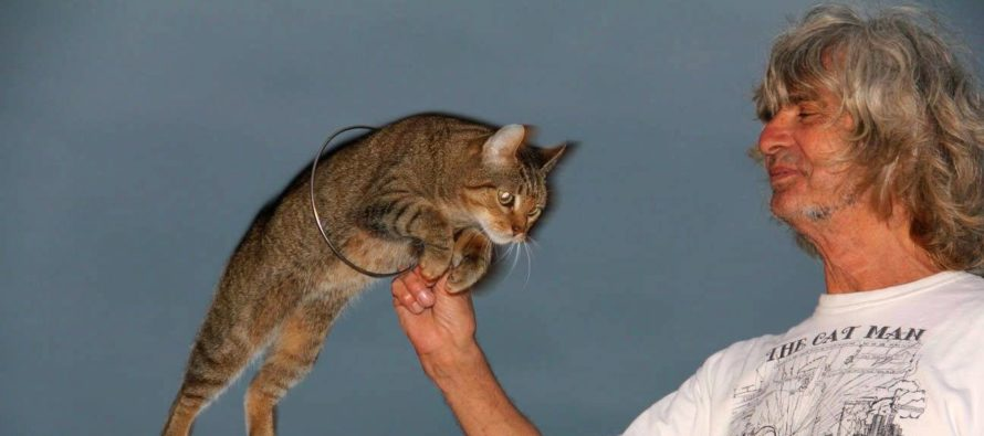 Key West : Dominique «Cat Man» Lefort, le Français le plus photographié de Floride !