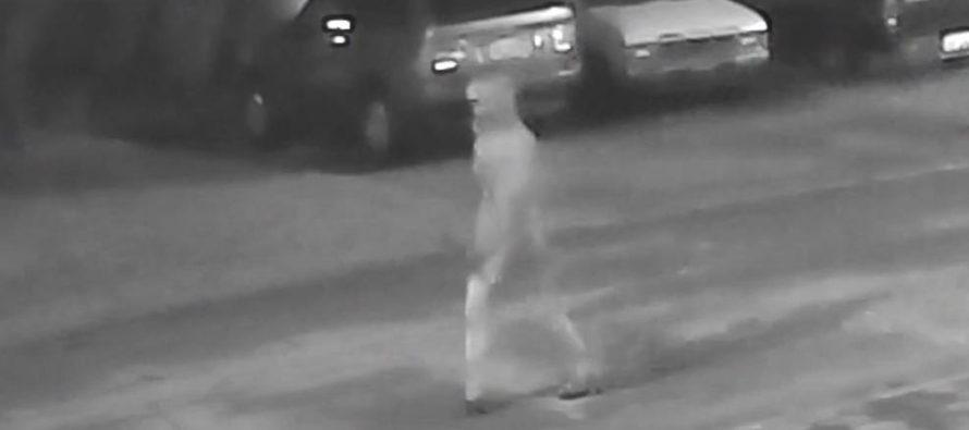 Tampa : la police offre 25000$ pour des infos sur le tueur en série présumé