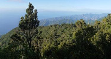 Visiter la Sierra Maestra : notre guide de voyage complet et gratuit de Cuba