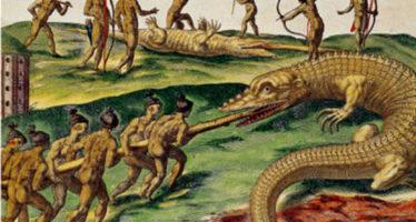 Nouveau Départ (suite de notre roman historique « Terre d'Espérance » sur l'arrivée des Français en Floride)