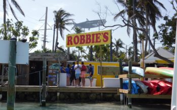 Une journée à Robbie's, la célèbre Marina de l'île d'Islamorada (Keys de Floride)