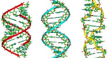 Révolution dans la recherche criminelle basée sur l'ADN