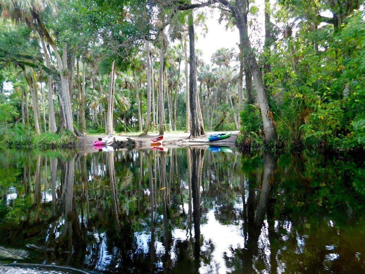 Photo of Loxahatchee River : la plus belle rivière du sud de la Floride