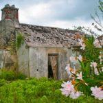 Bahamas Little Exuma Heritage plantation