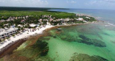 La belle plage de Paamul (près de Playa del Carmen au Mexique)