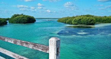 Sian Ka'an : comment visiter la réserve de la biosphère, véritable merveille du Mexique
