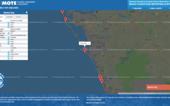 Red Tide en Floride : Une carte internet donne l'état exact des plages de la côte ouest