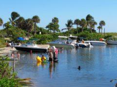 Johnson State Park : une petite merveille cachée à Dania Beach