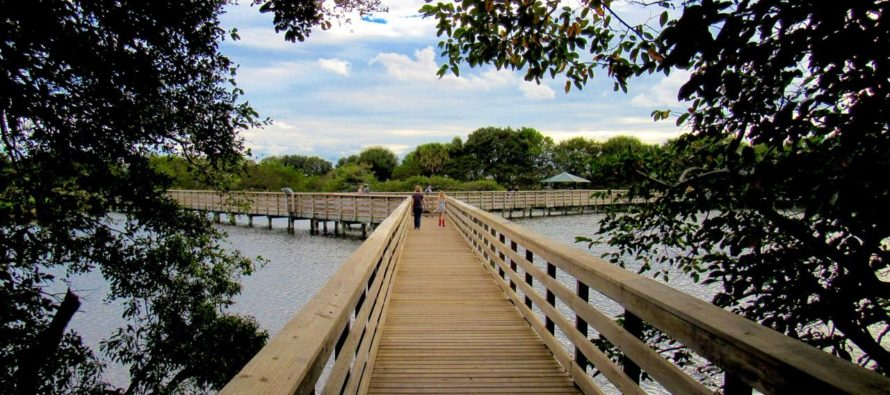 Wakodahatchee Wetlands : une belle halte nature à Delray Beach