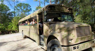 Babcock Ranch Preserve : de très beaux écotours à Punta Gorda (Floride)