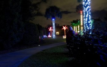 Les illuminations de Noël au Mounts Garden de West Palm Beach