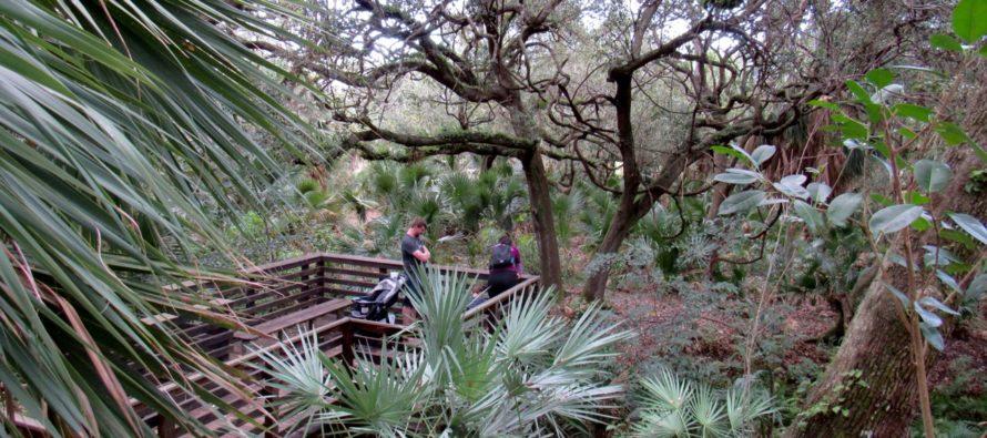 Delray Oaks : un très beau petit parc à Delray Beach