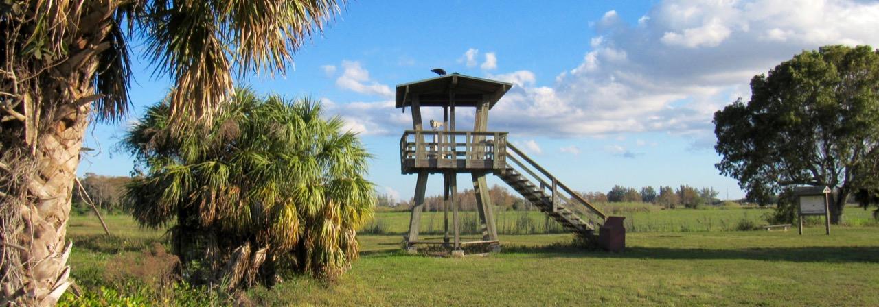 Photo of Loxahatchee Refuge : les Everglades à Boynton Beach (comté de Palm Beach)