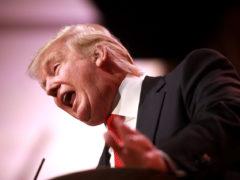 La cote de popularité de Donald Trump grimpe à 46% : son record !