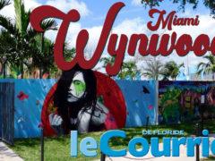 Vidéo : découvrez Wynwood Art District, le quartier des artistes de Miami