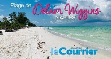 Vidéo : Delnor Wiggins, la plus belle plage de Naples (Floride)
