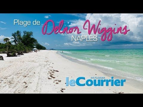 Photo of Vidéo : Delnor Wiggins, la plus belle plage de Naples (Floride)